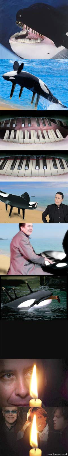 It's evolved to live off pianists