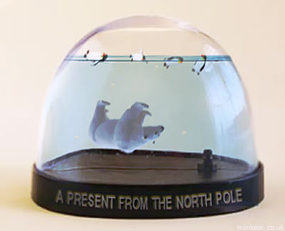 A Souvenir from The North Pole
